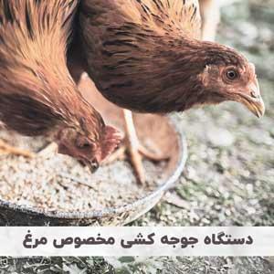دستگاه جوجه کشی مخصوص مرغ