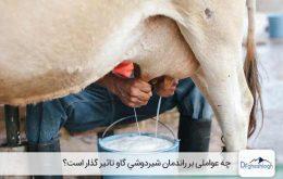 افزایش تولید شیر در گاو - صنایع ماشین سازی دکتر قشلاق