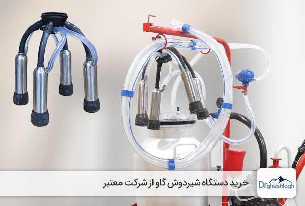 خرید دستگاه شیردوش گاو - صنایع ماشین سازی دکتر قشلاق