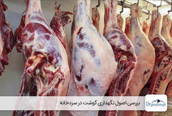 نگهداری گوشت در سردخانه - صنایع ماشین سازی دکتر قشلاق