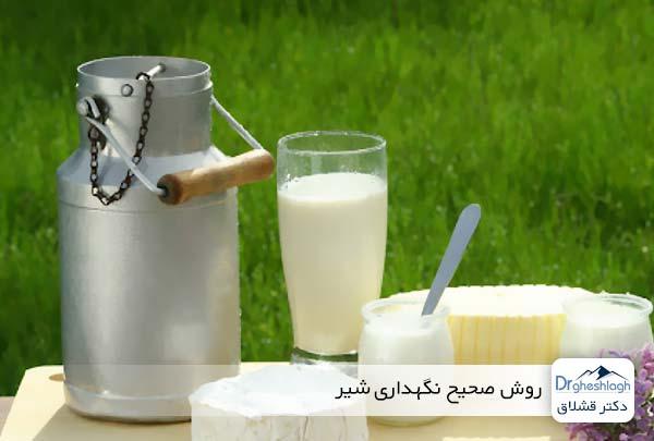 روش صحیح نگهداری شیر - دکتر قشلاق