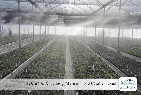 استفاده از سیستم مهپاش در گلخانه خیار